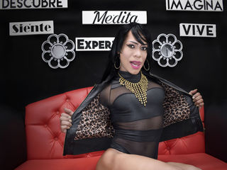 image of tranny cam model PERLACOCKTS